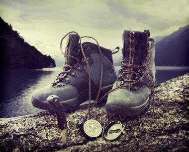 Hiking boots on tree trunk near lake