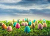 Fotografie Easter eggs in grass