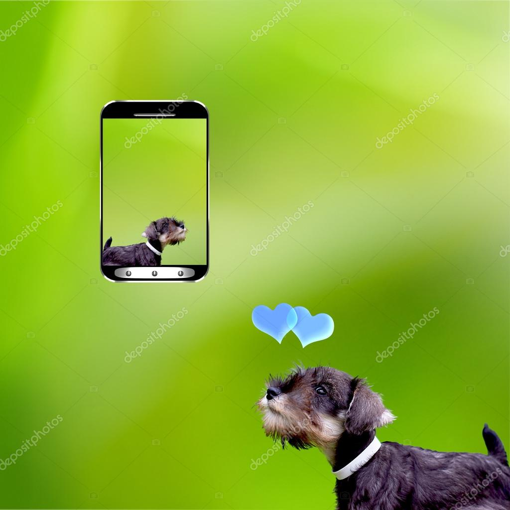 Desire a smart phone