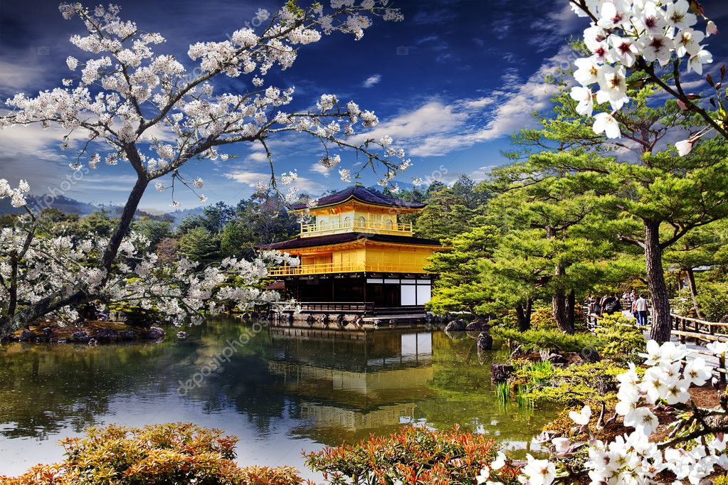 Beautiful sakura with gold color temple