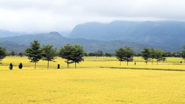 venkovská krajina zelená farma pod n