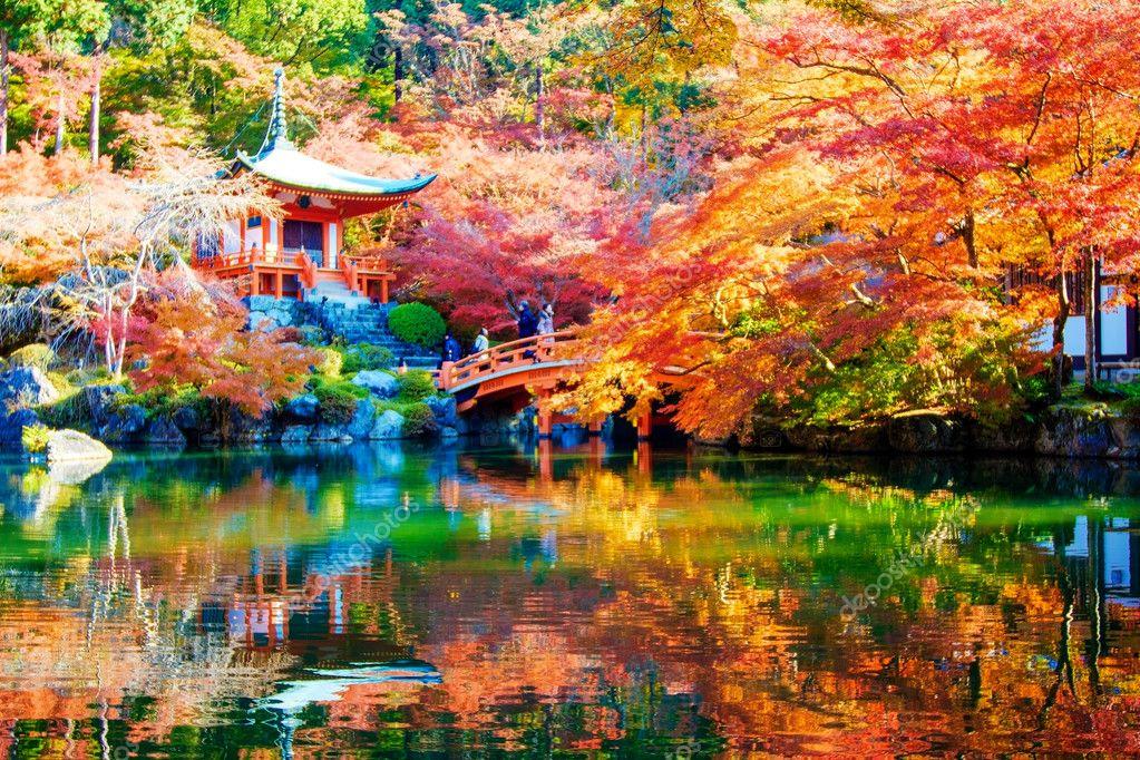 Automne jardin japonais avec maple kyoto japon for Jardin kyoto