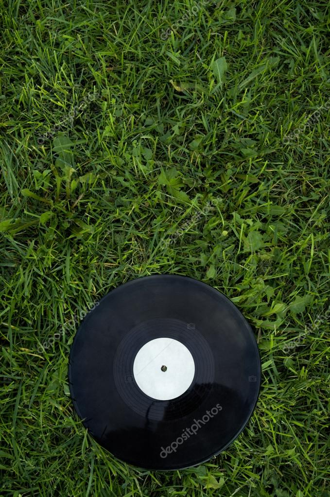 disk on the green grass