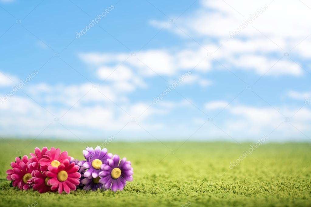 Photo-illustration of flowers on meadow