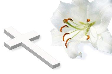 white lili and white cross
