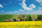 Repce field és házak