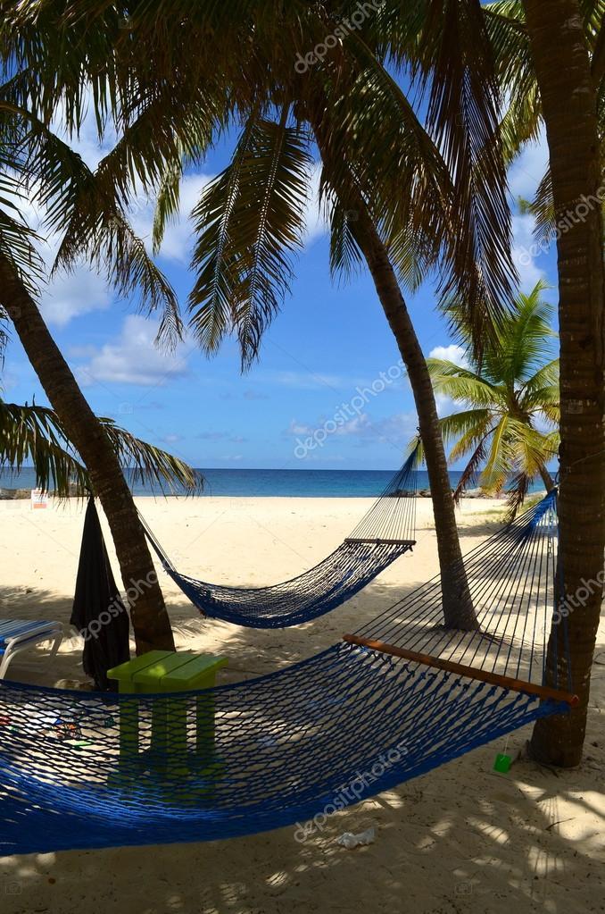 Bahamian Beach Scenic