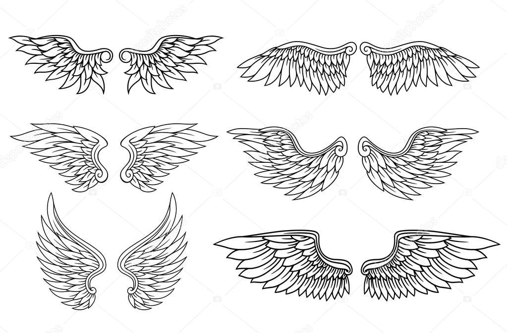 par de alas de águila o ángel — Archivo Imágenes Vectoriales ...