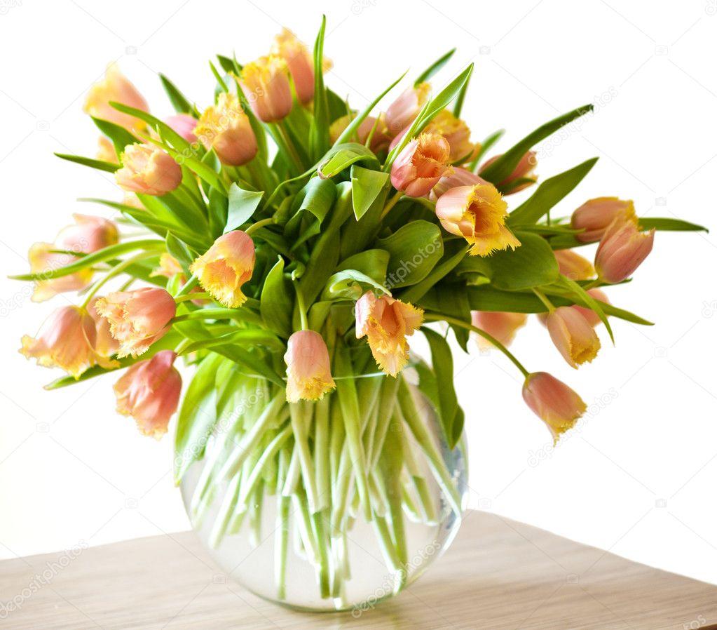 Bouquet di tulipani arancioni isolato su sfondo bianco for Tulipani arancioni