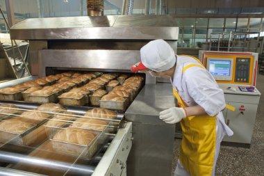 Food factory stock vector