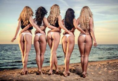 Sexy backs of five beautiful women in bikini on the beach