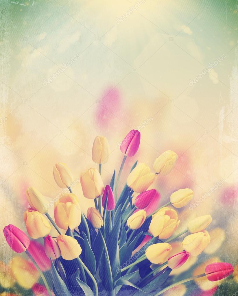 bouquet of tulips,vintage