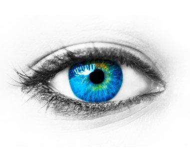 Blue woman eye extreme macro shot