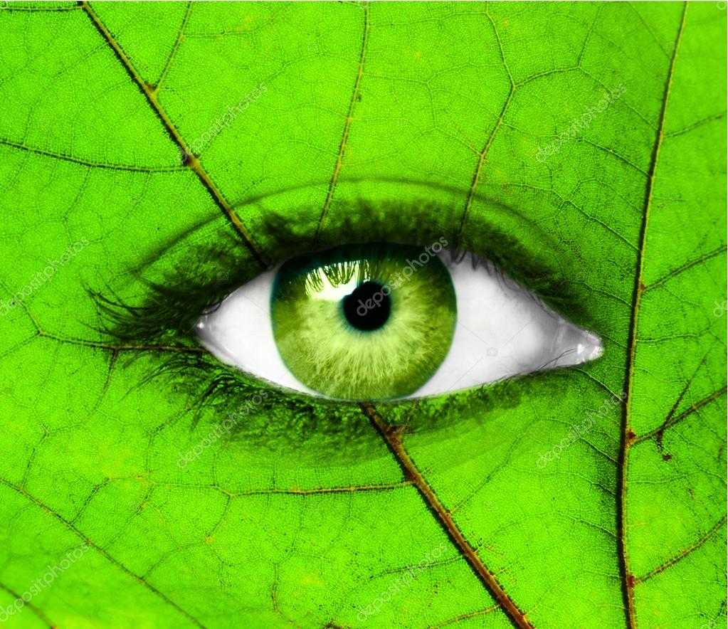 Green human eye with leaf - Ecology concept