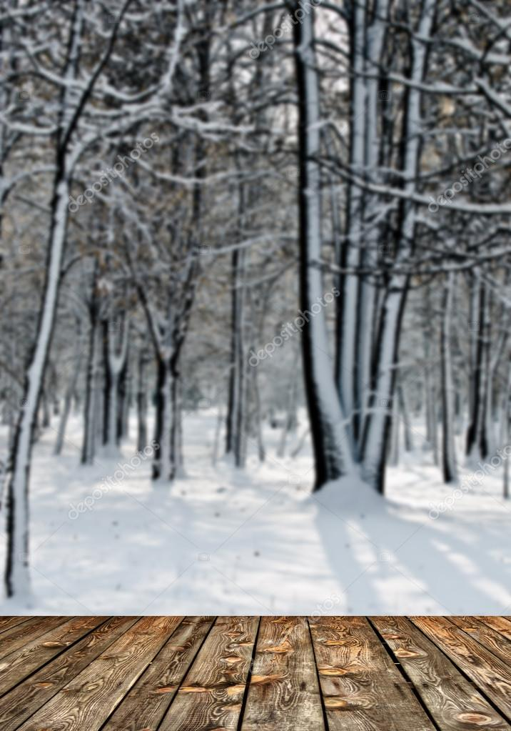 Winter forest and wooden floor