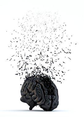 Shattered human brain