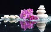 Fotografie lázně s kameny a květiny