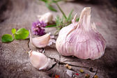 Fotografie čerstvé bylinky a koření
