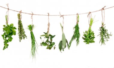 herbs hanging isolated on white background