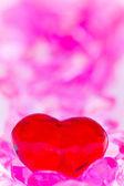 Fotografie Valentin day background