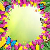 Fotografia bellissimo mazzo di tulipani