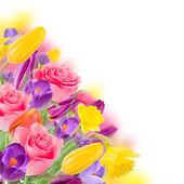 Fotografie Beautiful bouquet of flowers.