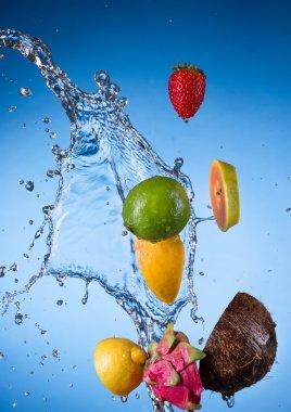 Fresh fruit with water splash stock vector