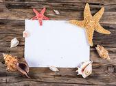 mořské mušle a hvězdice s pískem