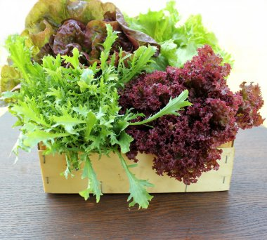 Green and red lettuce in box
