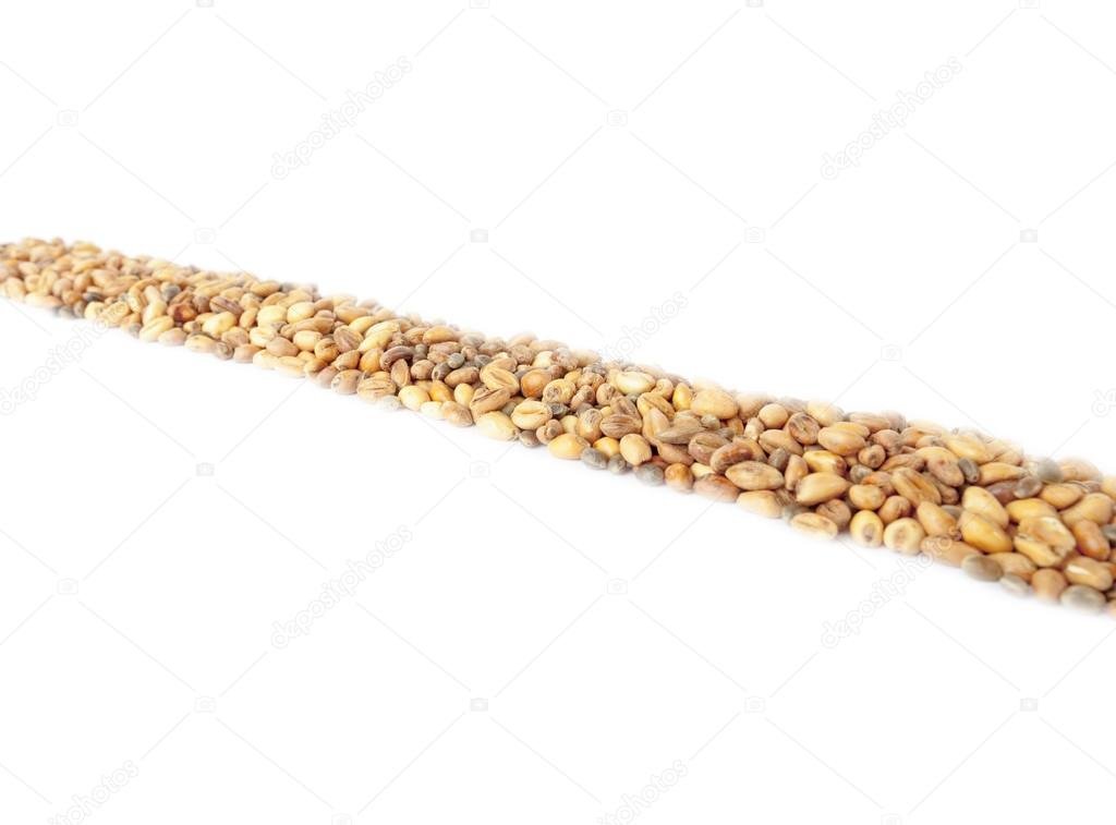 The horizontal Line composed of wheat and hemp isolated on white background