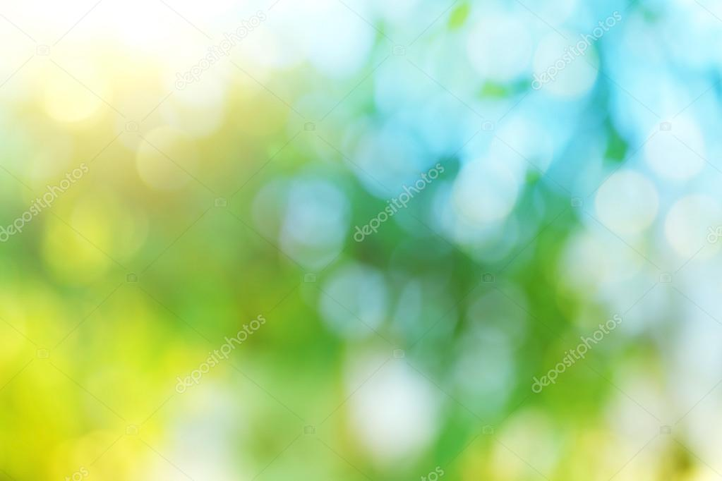 Background blur of nature in spring.
