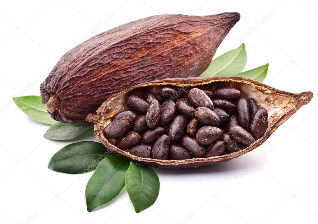 cacao #hashtag