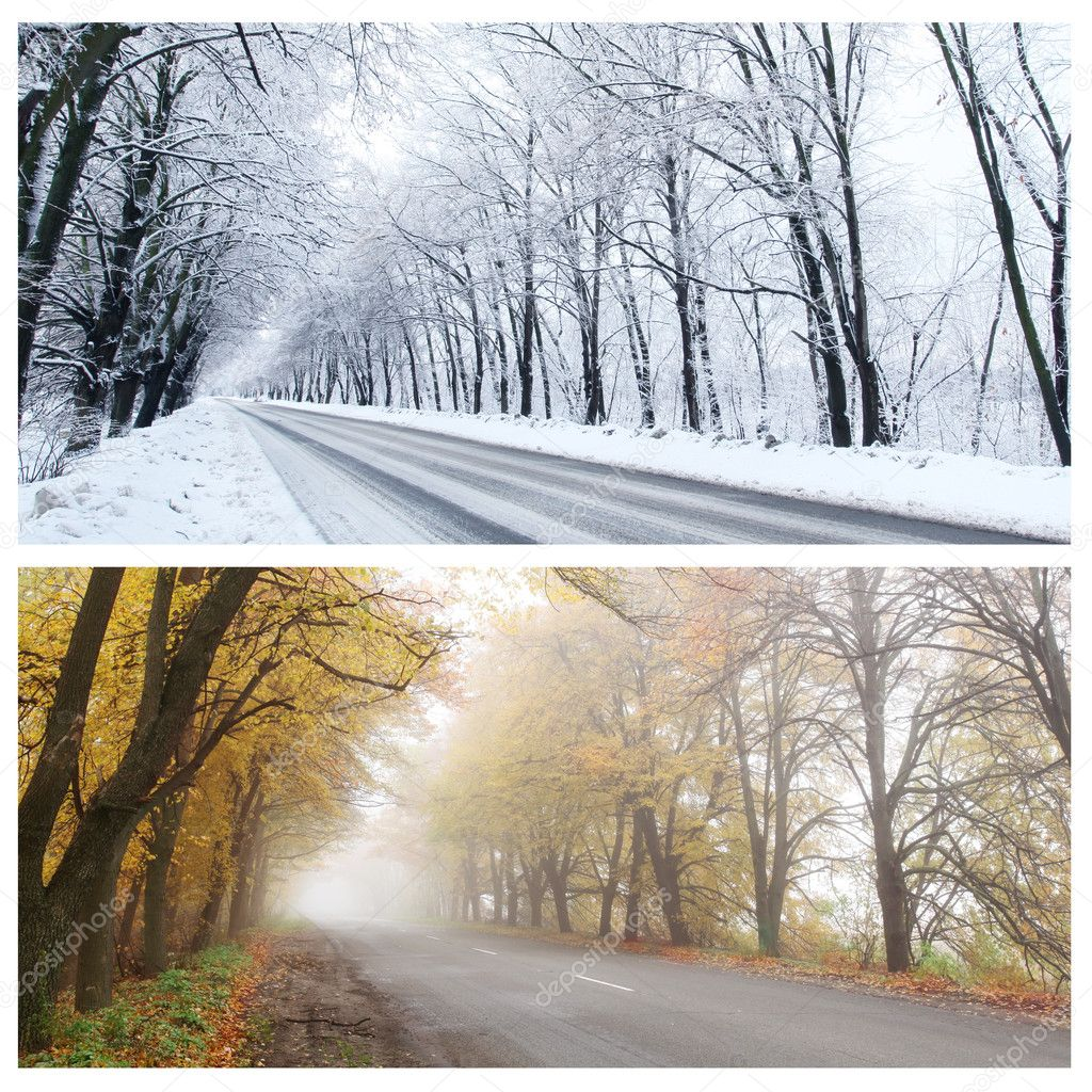 Winter and Autumn panorama of the forest road.