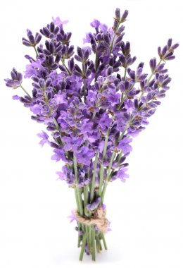 Bunch of lavender.