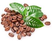 Pražená kávová zrna a listy