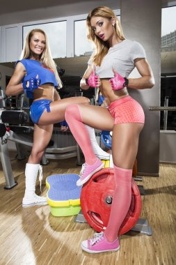 Sportive women in gym