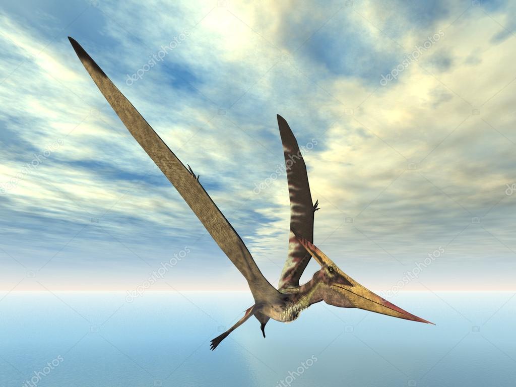 vol dinosaure Ptéranodon — Photographie mic1805 © #13819770 - photo#37