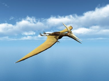 Ocean Sailing Pteranodon Ingens