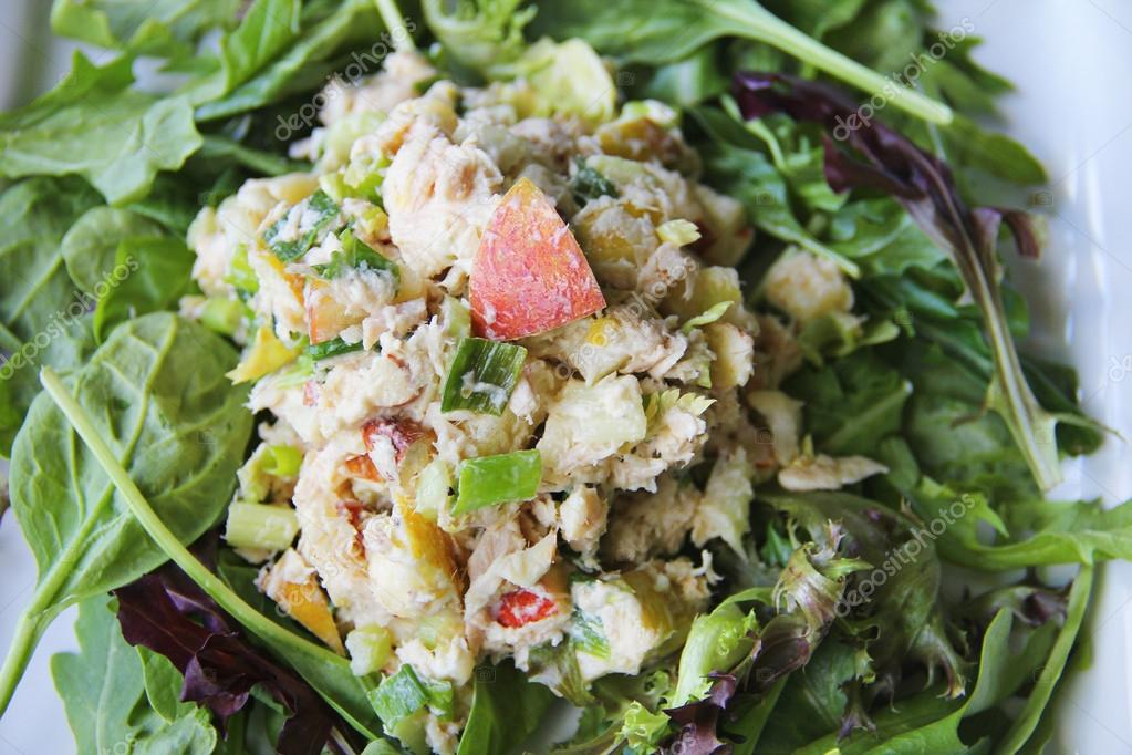 Apple tuna nut salad upclose