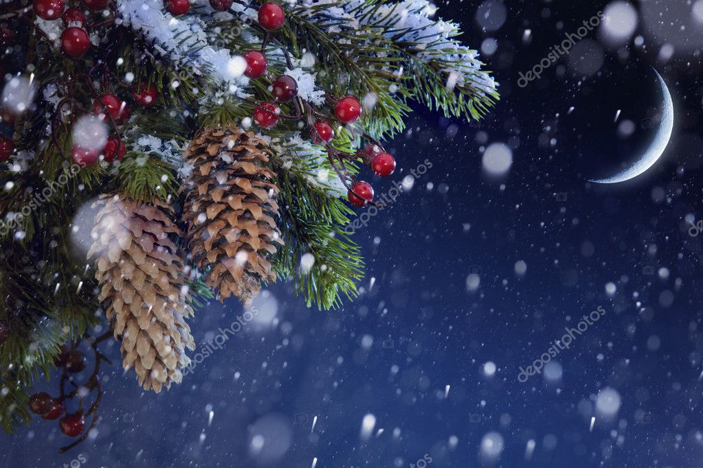 Christmas tree covered with snow on the blue night sky, xmas bac