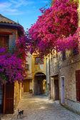 Fotografie umění krásné staré město provence