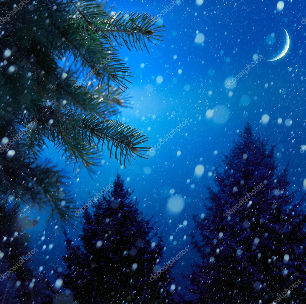 Christmas tree on winter night blue snow background