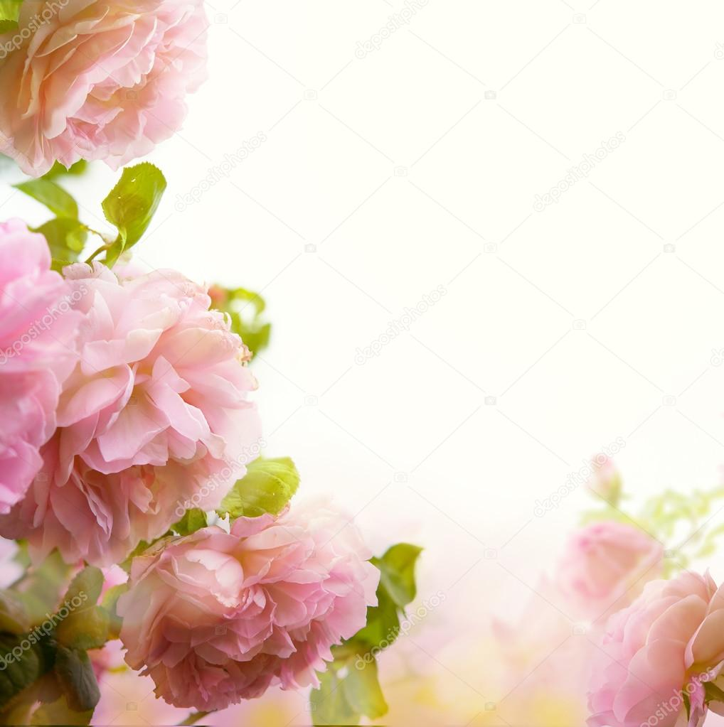 Abstract Beautiful Pastel Floral Border Background Photo By Konstanttin
