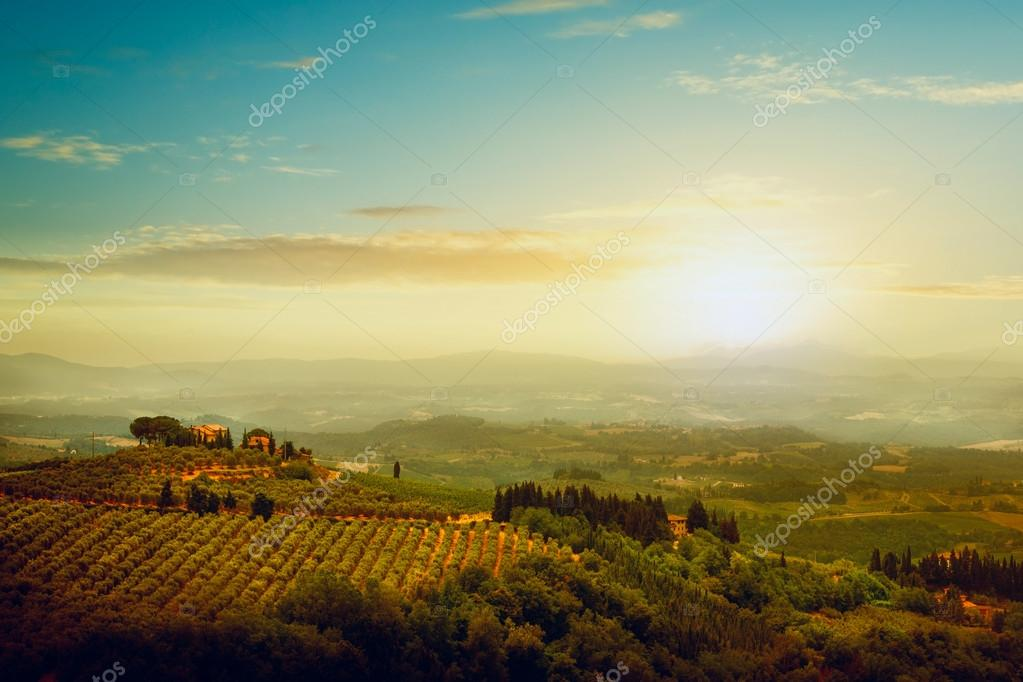 Traditional villa in Tuscany, famous vineyard in Italy