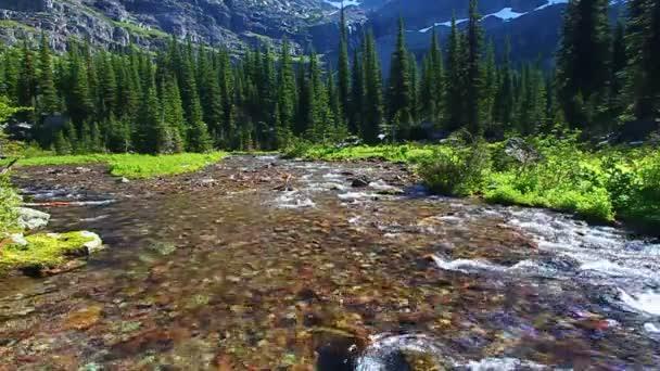 Sprague Creek Glacier National Park