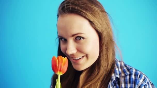 szippantás piros tulipán