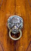Fotografia Maniglia porta