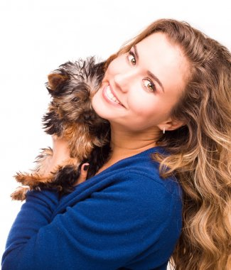 Cute young girl holding Yorkshire terrier dogs
