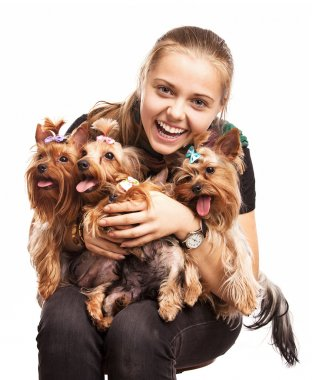 Cute young girl holding Yorkshire terrier dogs on her lap Cute young girl holding Yorkshire terrier dogs on her lap