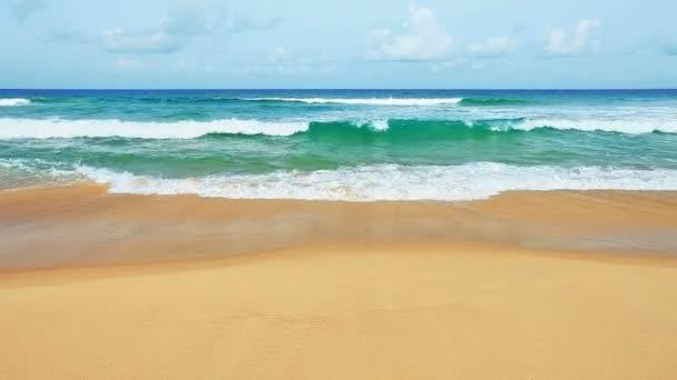 Waves on the tropical sea coast